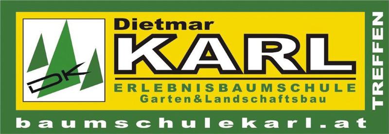 Dietmar Karl